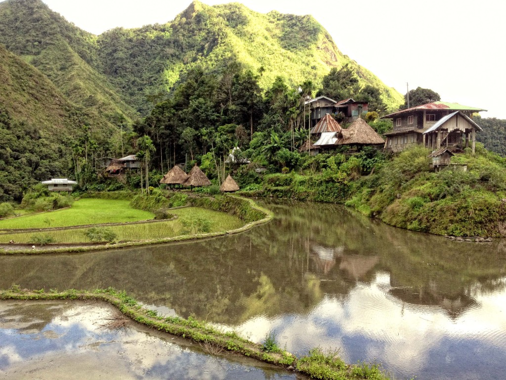 Rice paddies surrounding the village in Batad