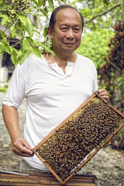 Ilog Maria founder Joel Magsaysay shows off his little army of bees - his trusty aide in conducting bee sting therapy session