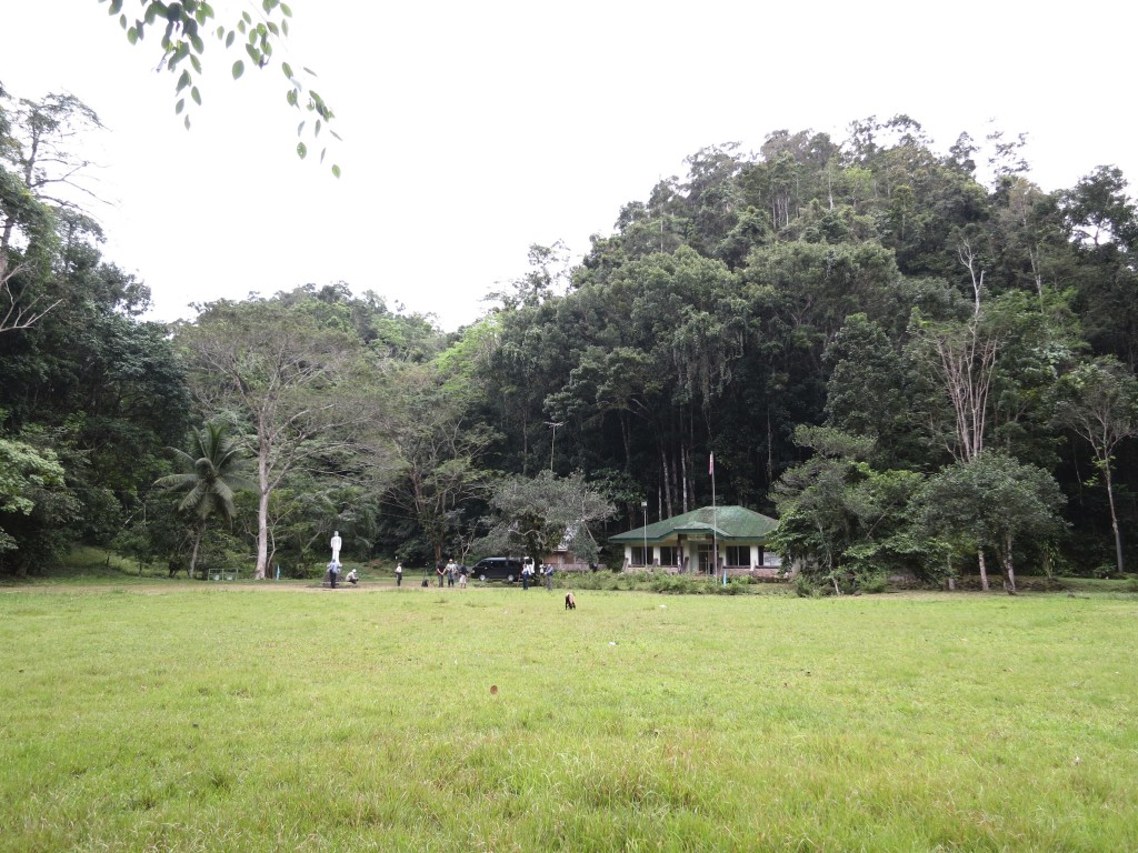 Rajah Sikatuna Protected Landscape in Bohol is a top birding site in the Philippines