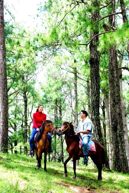 Exploring Baguio on horseback. Photo by Fedz Decena