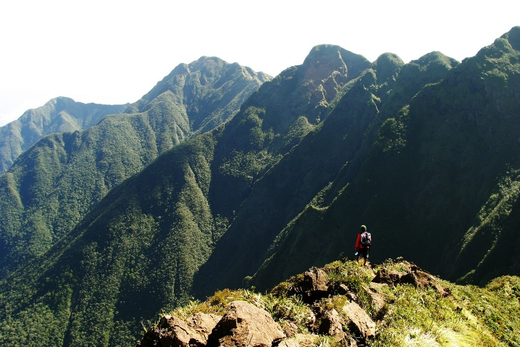 Climbing Mt. Guiting-Guiting. Photo by George Tapan