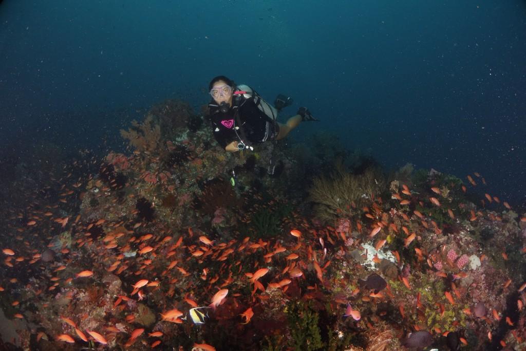 Mainit dive site in Anilao, Batangas. By Gigi Santos