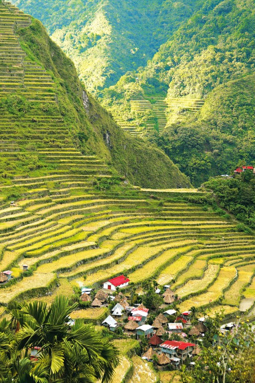 The Banaue Rice Terraces. By Joel Garcia