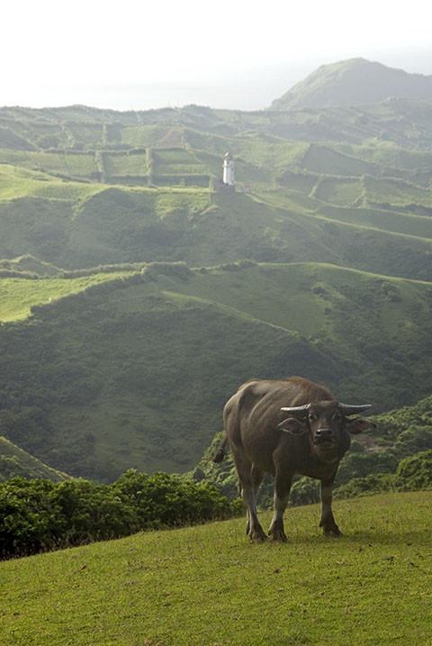Marlboro Hills.By Oggie Ramos